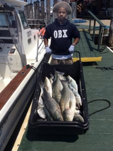 Cod Fishing in Montauk